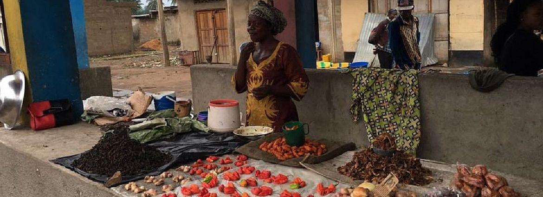 Une vendeuse d'épices au marché de Gungu